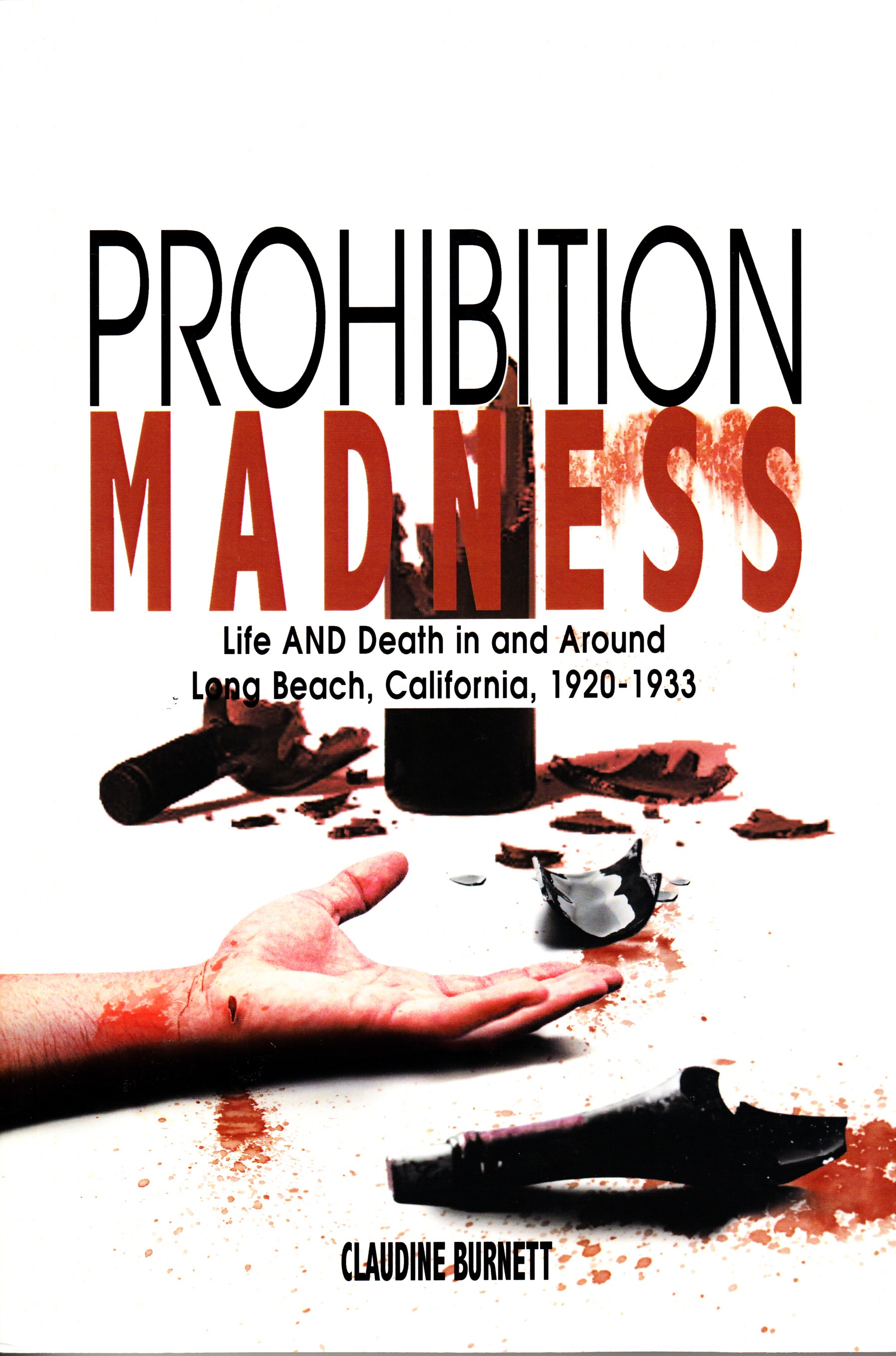 Prohibition Madness book cover