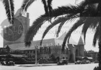 Long beach palm trees and large buildings